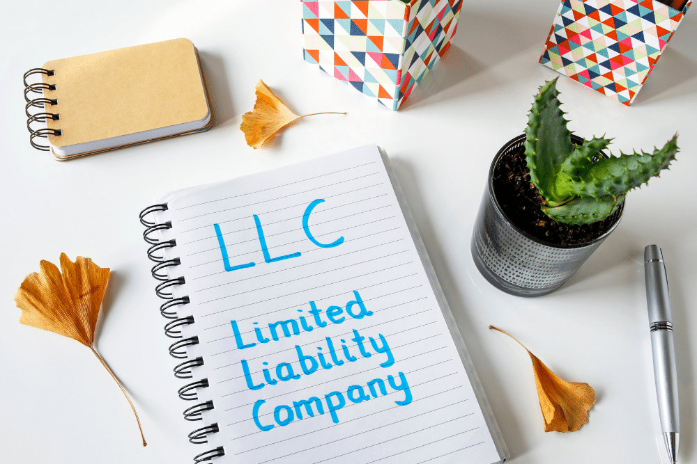 Who Are the Parties in a Limited Liability Company?